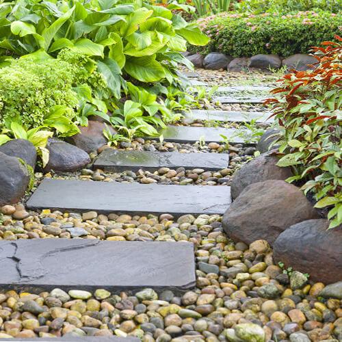 camino-piedras