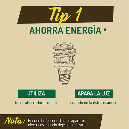 tip_1_ambiente