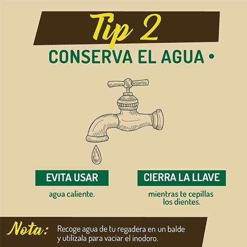 tip_2_ambiente