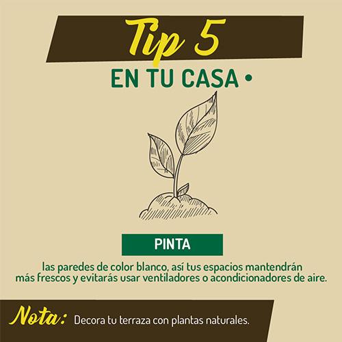 tip_5_ambiente