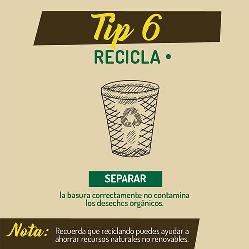 tip_6_ambiente
